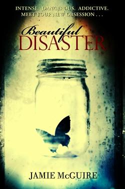bautifull disaster